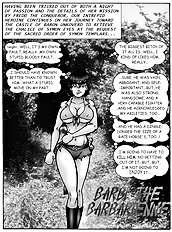 Barbi the barbarienne 5 (Stahl,D)