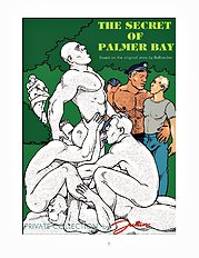 The Mystery Of Palmer Bay